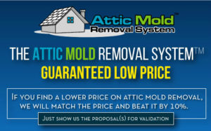 Free Attic Mold Inspection
